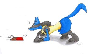 How to catch a lucario by danwolf15