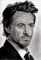 Robert DOWNEY Jr by Sadness40