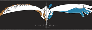 HeartGold and SoulSilver by Kureculari