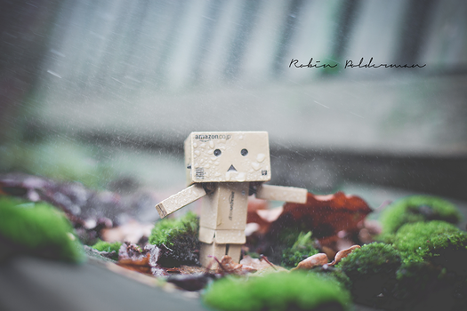 It's all about the rain by Pamba