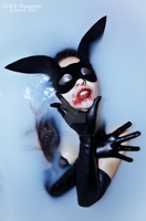 Bunny by G-P-Photography