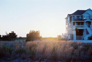 beach house by growtrees