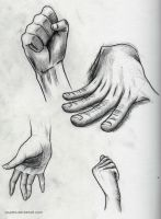 Male & Female Hands by Souptra