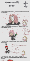 Organization XIII Meme by byakko