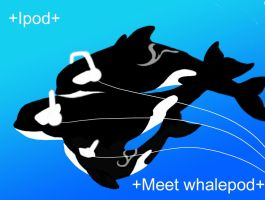 Whale Pod by WhiteWingedAnwe