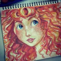 Disney Pixar : Merida's Hair by spogunasya