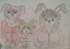 Year of the rabbit. by WhippetWild