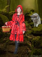 Little Red Riding Hood by MDBOOKCOVERS