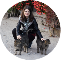 Autumn ID with cats by panna-cotta