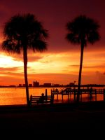 Tampa sunset by RiotLife