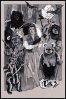 STAR WARS: Endor Liberators by MJasonReed