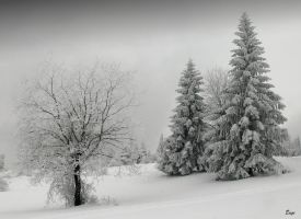 ...winter scene 9... by eugi3
