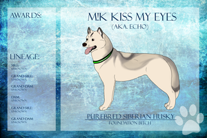 M!K Kiss My Eyes Ref Sheet by xMush-Kennelsx