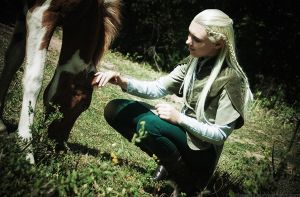 Legolas Greenleaf cosplay. Rohan [3] by the-ALEF