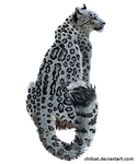 Snow leopard by Chilkat
