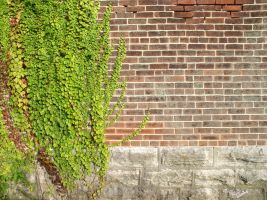 Brick Wall Texture 2 by SanStock