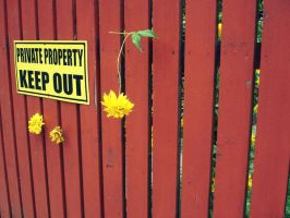 keep out by andr33aa