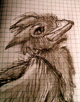 Gryphon Sketch by Heatphones