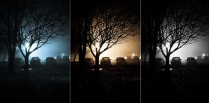 Foggy night by thechevaliere