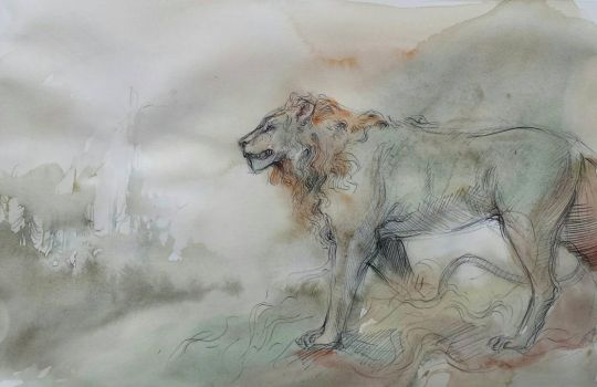 Lion by the Mist Shrouded Forest by Cassiuseos