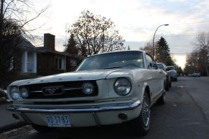 '66 Mustang by KyleAndTheClassics