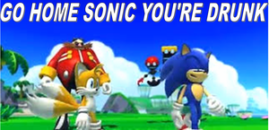 Go home Sonic you're drunk. by Sonicluvr5