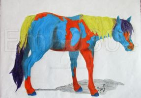 A Horse Of Different Color by EmR0304