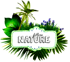 +Nature Fillers (png's) by natieditions00