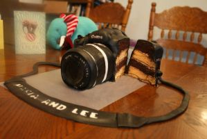Camera Cake Cut Open by Jenileigh