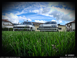 Half brothers HDR by vksDC