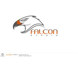 Falcon Studio - UAE by mortazah
