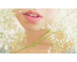 baby's breath by JeanFan