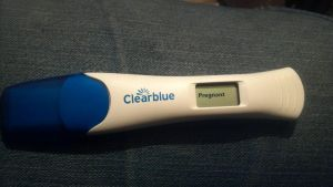 I'm Pregnant! by CalicoWoolfe