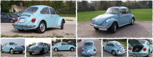 Original VW Kaefer 1303 by rax001