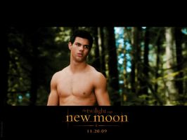 jacob black . new moon by naninhaxxx