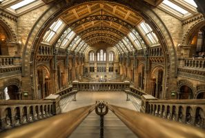 Natural History Museum, London by nickhighfields