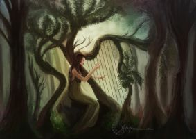 Lyre by Smaragdia