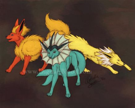 Eeveelutions- water fire elect by digital-blood