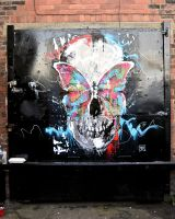 Butterfly Skull Street Piece by ART-BY-DOC