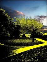 follow the yellow brick road by pwlldu