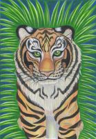 Siberian Tiger by Eviecats