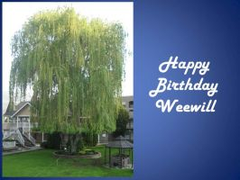 Happy Birthday Weewill by fixinman