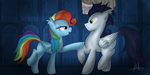 Rainbow Dash and Soarin by Lycania29