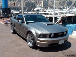 Ford Mustang V No. 3 by MU5T4N6