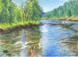 ACEO Reflections Trees Lake by robertsloan2