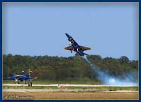 2011 Blue Angels 8 by Dracoart