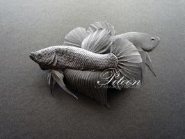 Paper Sculpture - Betta Fish by 8thLeo