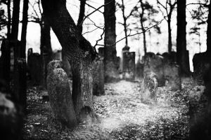 Graves open. by immugraah