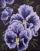 Fancy Pansies by mbeckett