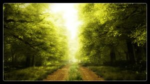 Lime Light Avenue by papamook